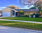 930 Cortland Way, Palm Harbor image