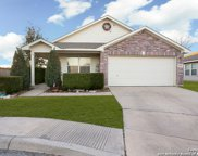 9503 Mill Path, San Antonio image