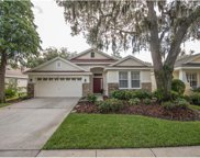 6112 Gannetwood Place, Lithia image