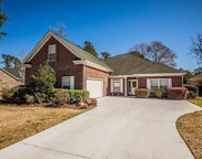 351 Foxtail Dr., Longs image