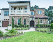 635 Canopy Estates Drive, Winter Garden image