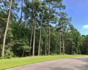 Lot 133 Ocean Lakes Loop, Pawleys Island image