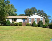 117 Hunters Point Cir, Hoover image