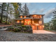 20250 SW JAQUITH  RD, Newberg image
