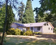 4603 240th St SE, Bothell image
