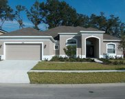 2308 Fountain Grass Drive, Valrico image