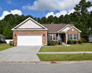 3128 Ivy Lea Drive, Conway image
