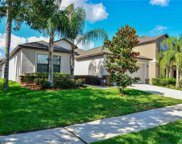 10931 Whitecap Dr Drive, Riverview image
