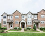 82 Rosehall Drive, Lake Zurich image