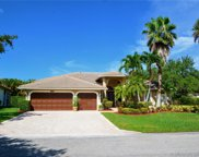 4917 Nw 110th Ter, Coral Springs image