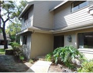 405 Old Mill Pond Road, Palm Harbor image