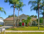 4514 Gentrice Drive, Valrico image