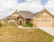 10410 Windy Pointe, Temple image
