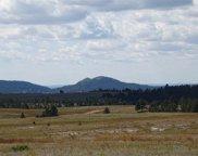 10798 Pass Creek Road, Custer image