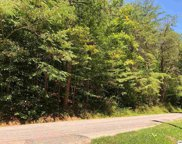 Lots 56 & 57 Cove Hollow Road, Cosby image