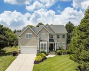 4508  Shadow Moss Circle, Fort Mill image