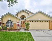 6721 Monarch Park Drive, Apollo Beach image