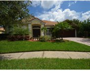 11009 Belmere Isles Court, Windermere image
