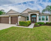 13601 Artesa Bell Drive, Riverview image