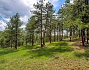 8213 Stags Leap Trail, Morrison image