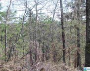 0000 Cogswell Ave Unit vacant 61+- acres, Pell City image