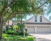 10155 Whisper Pointe Drive, Tampa image
