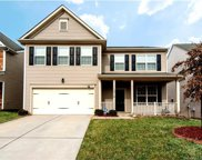 12516  Hunting Birds Lane, Charlotte image