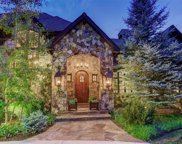 988 Preston Court, Castle Rock image