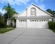10202 Thicket Point Way, Tampa image