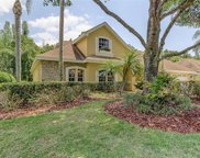 12117 Clear Harbor Drive, Tampa image