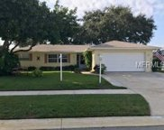 3209 Parkway Place, Palm Harbor image