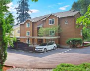 455 Newport Wy NW Unit 201, Issaquah image