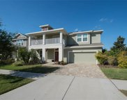 15608 Starling Crossing Drive, Lithia image