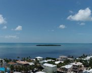 101 Tweedy Pie Terrace, Key Largo image