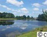 1229 Woodstork Dr, Conway image