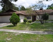 9207 Knights Branch Street, Temple Terrace image