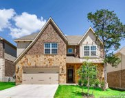 10826 Yaupon Holly, Helotes image