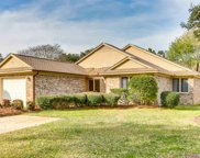 684 Flamingo Ct., Murrells Inlet image