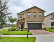 1935 White Lilly Court, New Port Richey image