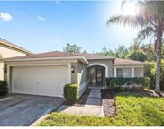 18121 Sandy Pointe Drive, Tampa image