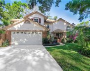 8410 Admiral Point, Winter Park image