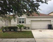 11172 Golden Silence Drive, Riverview image