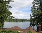 S Lake Roesiger Road, Snohomish image