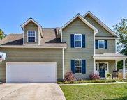 9478 Cottonwood Lane, Leland image