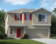 5127 White Chicory Drive, Apollo Beach image