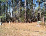 401 Twinbrook Ct, Conway image