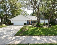 1029 Creeks Bend Drive, Casselberry image