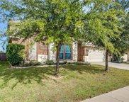 10253 Paintbrush Drive, Fort Worth image