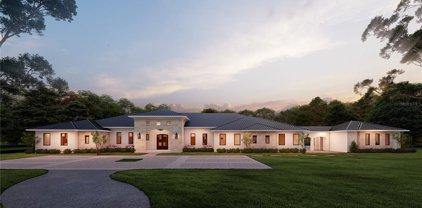 17614 Grande Estates Place, Lutz