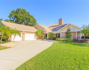 13004 Waterford Run Drive, Riverview image